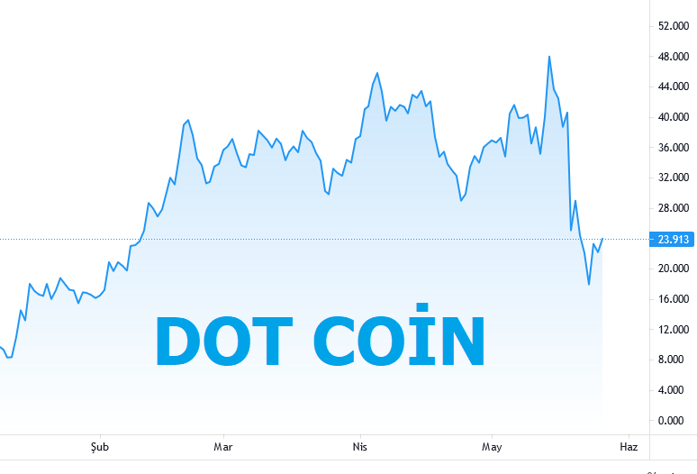 Dot Coin Yorum 2021