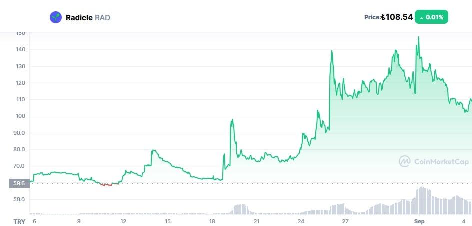 Rad Coin Geleceği 2021 - Radicle Coin Alınır Mı?
